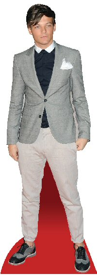 Grey Coat Mini Cutout Danny O/'Donoghue